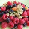 piccolifrutti